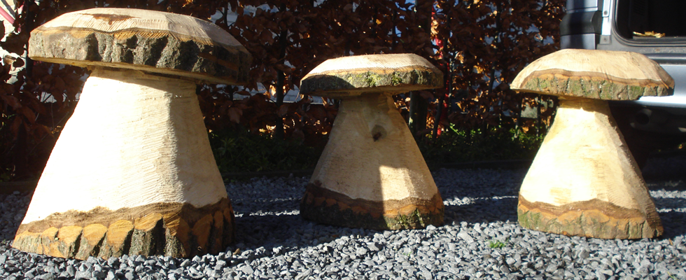 Citaten Over Hout : Creatief met hout beverboomzorg